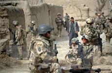 Đức duy trì cam kết đối với tiến trình hòa bình tại Afghanistan
