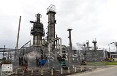 Nigeria thất thoát 200.000 thùng dầu thô mỗi ngày do nạn trộm cắp