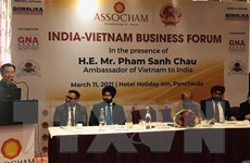Việt Nam-Ấn Độ đẩy mạnh hợp tác đầu tư song phương