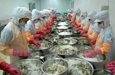 Doanh nghiệp chế biến tôm xuất khẩu mở rộng đầu tư cho dài hạn
