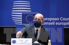 EU tổ chức hội nghị thượng đỉnh trực tuyến do dịch COVID-19 phức tạp
