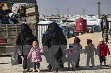 LHQ kêu gọi đảm bảo người tị nạn được tiếp cận công bằng vaccine