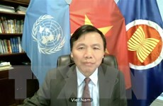 Việt Nam hoan nghênh vai trò của Phái bộ Liên hợp quốc tại Kosovo