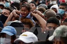 Mexico kêu gọi người di cư không sử dụng trẻ em để tìm đường tới Mỹ