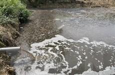 Yên Bái: Cần xử lý dứt điểm tình trạng ô nhiễm tại trang trại lợn