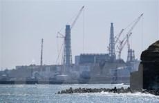 Nhật Bản tái khẳng định nước thải từ nhà máy số 1 Fukushima an toàn