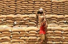 Thị trường nông sản tuần qua: Giá gạo Ấn Độ thấp nhất trong 5 tháng