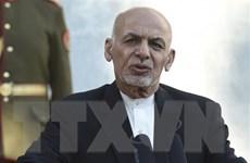 Tổng thống Afghanistan yêu cầu các lực lượng thực hiện lệnh ngừng bắn