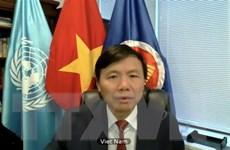 Việt Nam ủng hộ bầu cử tự do và công bằng ở Iraq