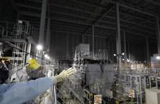 Tòa bác đơn kiện của người từng tham gia dọn dẹp phế thải ở Fukushima