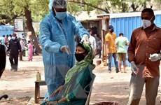 Số ca mắc mới ở Ấn Độ giảm xuống dưới 300.000 ca mỗi ngày