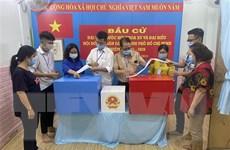 Bầu cử QH: Cử tri Thành phố Hồ Chí Minh đi bỏ phiếu đạt 99,38%