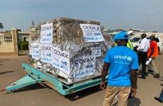 Nam Sudan trả lại hơn 70.000 liều vaccine do không kịp tiêm