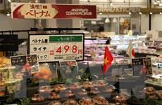 Việc tiêu thụ vải thiều ở Nhật Bản có nhiều tiến triển thuận lợi