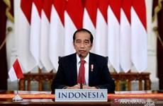 Indonesia phát triển khu công nghiệp xanh lớn nhất thế giới