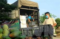 Bàn giải pháp tháo gỡ vướng mắc, lưu thông nông sản nhanh hơn