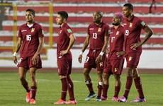 Giải bóng đá Copa America 2021 lại đón nhận cú sốc COVID-19