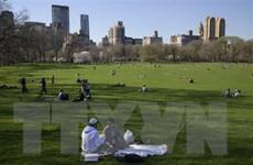 Mỹ: Bang New York lên kế hoạch dỡ bỏ tất cả biện pháp hạn chế