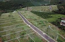 Lâm Đồng: Nhiều đồi chè, càphê tại B'Lao bị 'xẻ thịt,' phân lô bán nền