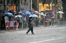 Mưa bão khiến sàn chứng khoán Hong Kong hủy phiên giao dịch sáng