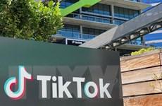 TikTok thử nghiệm cho phép người dùng nộp hồ sơ xin việc bằng video