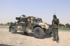 Quân đội Afghanistan và lực lượng Taliban đều đẩy mạnh tấn công