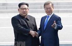 Người dân Hàn Quốc vẫn có xu hướng ủng hộ thống nhất hai miền