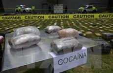 Colombia thu giữ 116 tấn cocaine trong chiến dịch ma túy đa quốc gia
