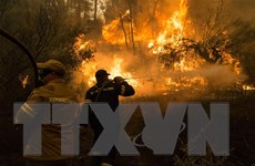 Hy Lạp vật lộn với thảm họa cháy rừng trong đợt nắng nóng kỷ lục