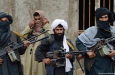 Đặc phái viên của Tổng thống Nga đánh giá khả năng Taliban chiếm Kabul