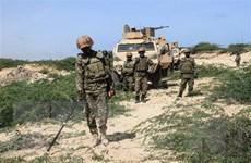 Việt Nam mong muốn Chính phủ Somalia phối hợp chặt chẽ với AMISOM