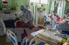 Toàn thế giới ghi nhận hơn 206 triệu ca nhiễm SARS-CoV-2