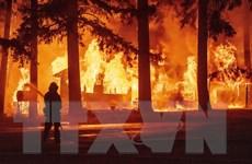 Mỹ: Đám cháy Dixie còn âm ỉ, California lại đối mặt vụ cháy rừng mới