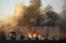 Hơn 7.000 hécta rừng bị thiêu rụi trong thảm họa cháy tại Pháp