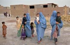 Afghanistan đứng trước nguy cơ nền tài chính đang lung lay