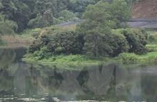 Yên Bái: Nhà máy gây ô nhiễm kéo dài, người dân liên tục kêu cứu