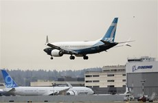 Ấn Độ cho phép máy bay Boeing 737 MAX hoạt động trở lại
