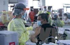 Lào tham vấn WHO về việc tiêm mũi thứ ba vaccine ngừa COVID-19