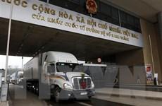 Khuyến cáo doanh nghiệp chưa vội đưa thanh long lên cửa khẩu Kim Thành