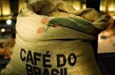 Giá càphê giảm, Brazil có thể hỗ trợ vốn cho nông dân