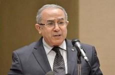 Nhiều tổ chức sẽ giám sát bầu cử tổng thống ở Algeria