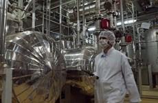 Iran tuyên bố làm loãng, biến đổi hơn 200kg urani làm giàu
