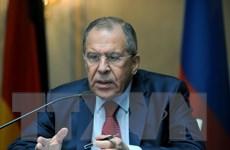 Ông Lavrov lo ngại Ukraine tăng cường chiến dịch quân sự