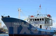 Chính phủ ban hành chính sách hỗ trợ ngư dân đóng mới tàu