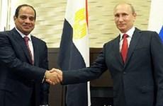 Nguồn nông sản Ai Cập có thể trở thành lối thoát cho kinh tế Nga