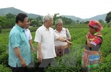 Tuyên Quang tập trung phát triển nông, lâm nghiệp chất lượng cao