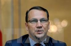 Cựu Ngoại trưởng Sikorski giữ chức Chủ tịch Quốc hội Ba Lan