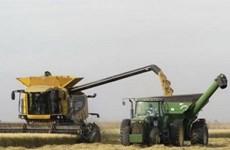 Uruguay ban hành luật cấm các nhà nước nước ngoài mua đất