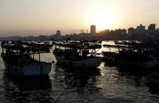 Hải quân của Israel nổ súng vào các thuyền cá Palestine