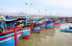 Hàng nghìn tàu cá ở Cà Mau đồng loạt ra khơi bám biển